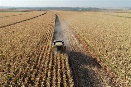 'AKP döneminde  3.5 milyon hektar alan tarım dışı kaldı'