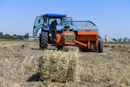 Atatürk Orman Çiftliği arazisinde hasat başladı