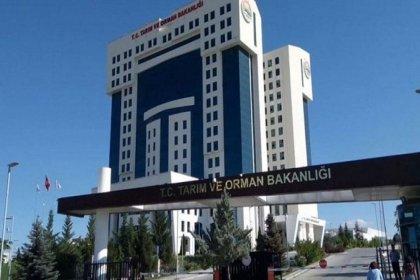 'Bakanlıkta 5 daire başkanı, Emine Erdoğan'ın kuzenine verilen ihale nedeniyle görevden alındı' iddiası