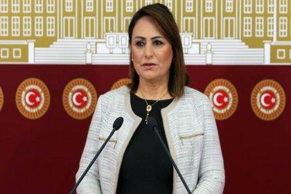 CHP'li Şevkin: Karpuz cennetine karpuz ithalatı kabul edilemez