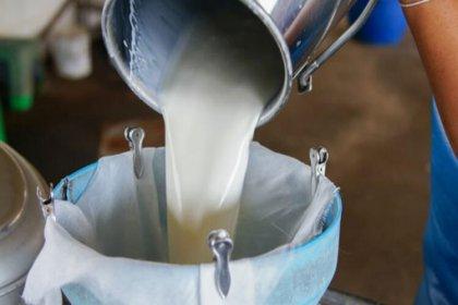 Çiğ süt fiyatına 30 kuruş destek verilecek
