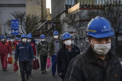 Çin'de yaşayan Türkler: Hükümet zamanında ve etkin adımlar attı, bilgi ağı çok kuvvetliydi