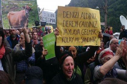 Danıştay, Karadeniz'deki 'Yeşil Yol' adlı betonlaşma projesini durdurdu