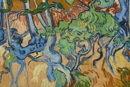 Eski bir kartpostal Van Gogh'un son tablosunun nerede yapıldığını ortaya koydu