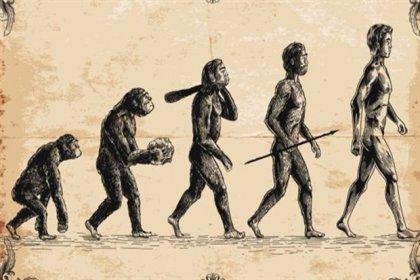 Evrimden bahseden ifadeler eğitim takviminden çıkarıldı