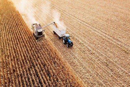 Gıda krizi ortaya çıkabilir