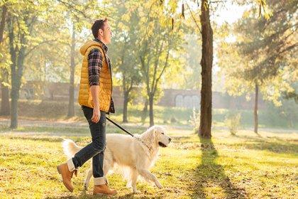 Günde en az 30 dakika yürüyün
