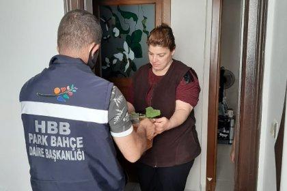 Hatay Büyükşehir Belediyesi şehit ailelerine fide dağıttı
