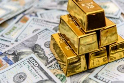 Hazine 2,5 milyar dolar ve 18,4 ton altın daha borçlandı
