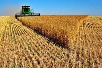 Hazine arazisinde çiftçilik projesi 6 pilot ilde başlayacak