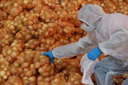 İBB, bu kez de Adanalı üreticiden patates ve soğan satın aldı