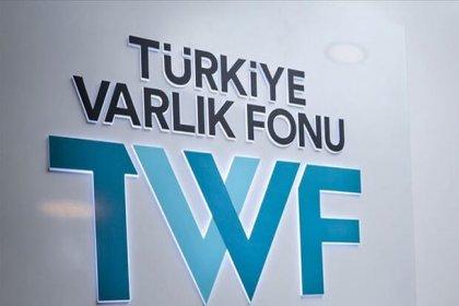 Türkiye Varlık Fonu 20 maden sahasını devraldı, 'Maden Holding' kurmaya hazırlanıyor