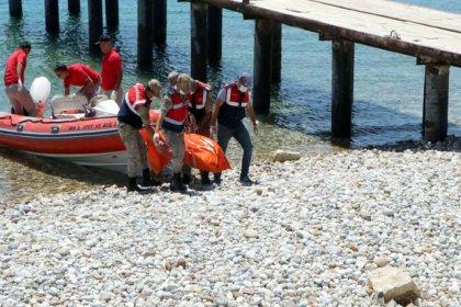 Van Gölü'nden çıkarılan ceset sayısı 61'e çıktı