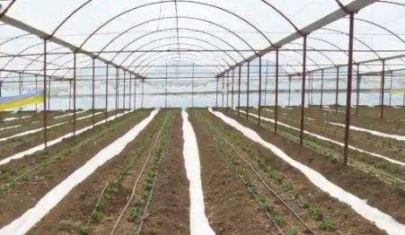 Antalya Büyükşehir Belediyesi dijital tarım sistemine geçiş çalışmalarına başladı
