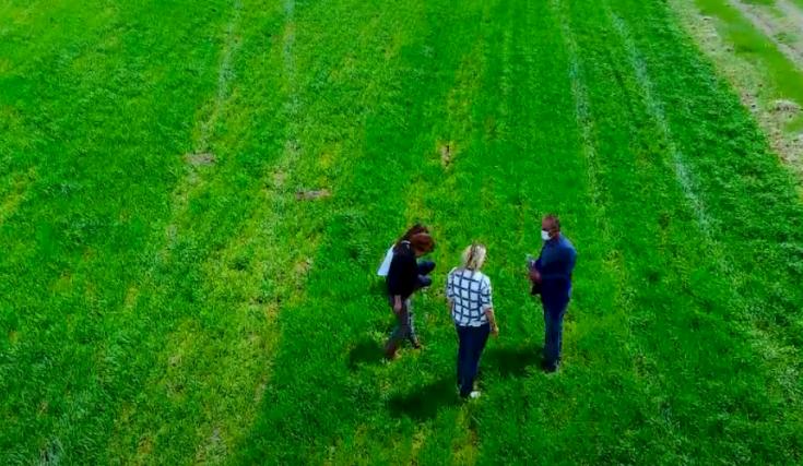 Antalya Büyükşehir Belediyesi, terkedilmiş tarım alanlarını üretime kazandırıyor