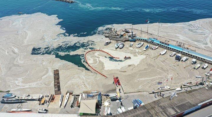Bakan Kurum: 8 ve 9 Haziran'da denizlerimizden toplamda 392 metreküp müsilaj topladık