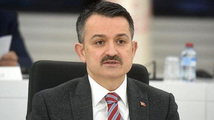 Bakan Pakdemirli: Dünyada yangına en hızlı müdahale rekoru Türkiye'ye aittir