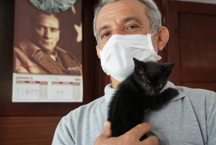 Belediye ekipleri yavru kedi için seferber oldu