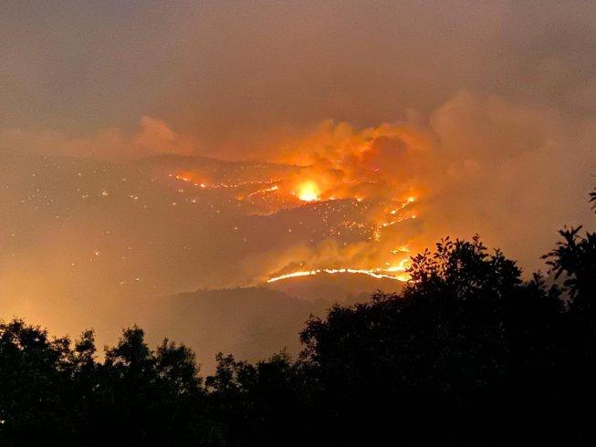 Bingöl'de yangın 3 gündür söndürülemiyor; yangın canlıları yok ediyor