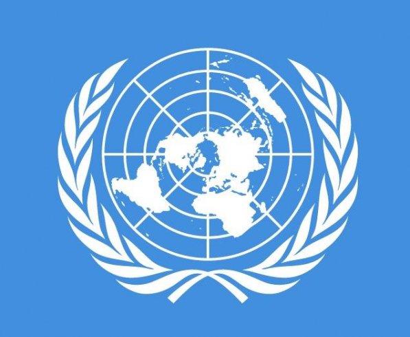 BM Raporu: Batılı paralı askerler Libya hükümetini devirmek istedi