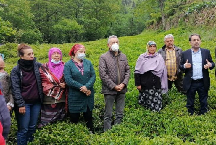 CHP Rize İl Başkanı Saltuk Deniz: Yaş çaya zam yapılmamış, sadaka verilmiştir