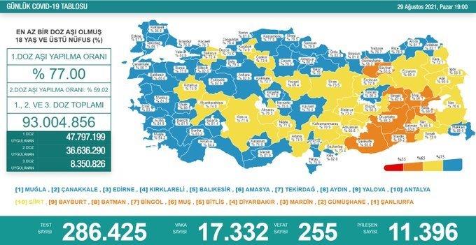 Covid_19, Türkiye'de 29 Ağustos'ta 255 toplamda 56.208 can aldı