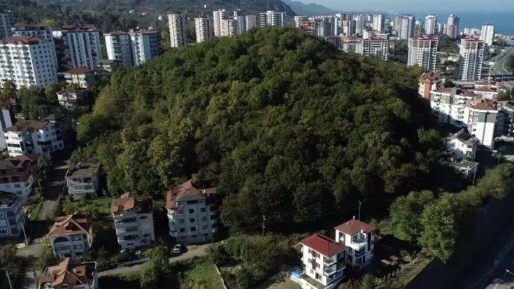 Erdoğan'ın kararıyla imara açılan alanda ağaç kesimi başladı
