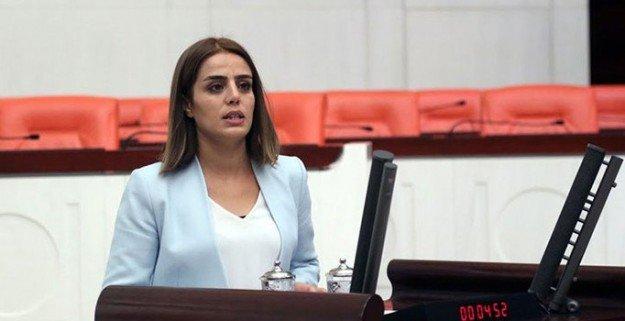 HDP'li Başaran, Erdoğan'ın kitabının ABD'deki tanıtımına ne kadar harcandığını sordu