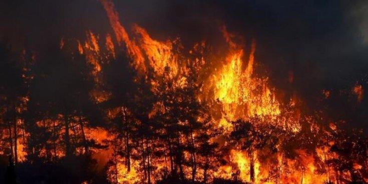 Manavgat'taki yangında can kaybı 7'ye yükseldi