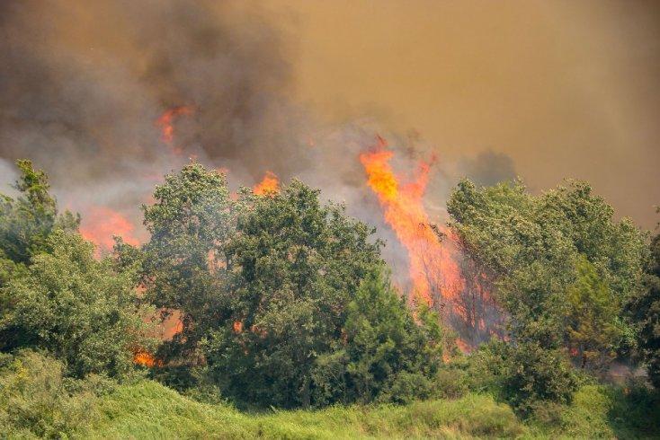 Manavgat'taki yangından acı haber: Alevler arasında kalan arazözdeki 2 işçi hayatını kaybetti
