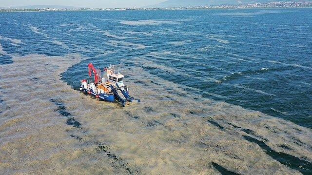 'Marmara'ya taşınan azot ve fosfor yükleri denizin dengesini bozdu'