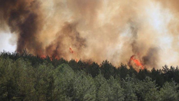 Milas Belediye Başkanı Tokat: Yeniköy Termik Santrali'ne 4 km mesafede yangın devam ediyor