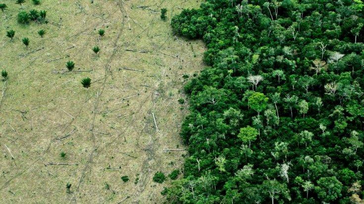 Sağlık uzmanları uyardı: İklim krizi pandemi riskini artırıyor