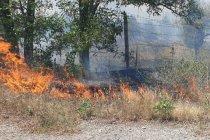 'Atatürk Orman Çiftliği'ndeki yangınla ilgili suç duyurusunda bulunacağız'
