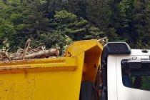 Cengiz İnşaat kestiği ağaçları, Bakan Karaismailoğlu'nun ziyareti öncesi kamyonlarla bölgeden uzaklaştırdı