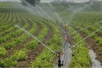 DSİ açıkladı; modern sulama sistemlerinin oranı %94'e yükselecek