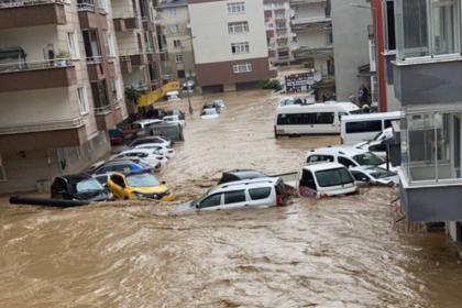Artvin'deki sel felaketinde 430 ev ve iş yerini su bastı