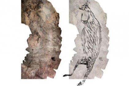 Avustralya'da 17 bin 300 yıllık kanguru resmi keşfedildi