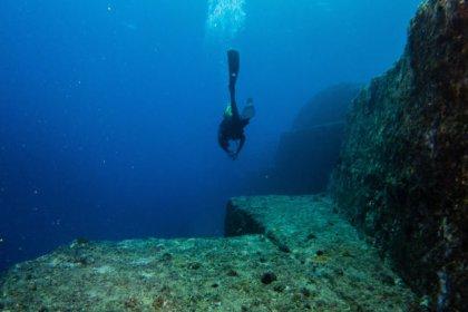 Avustralya'da okyanusun derinliklerinde yeni sünger türleri keşfedildi