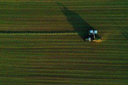 Belçikalı çiftçi farkında olmadan Fransa sınırını 'yeniden çizdi'