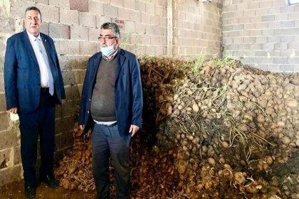 CHP'li Gürer: En az 100 bin ton patates çürüdü