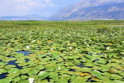 Çivril Işıklı Gölü'nde görsel şölen başladı
