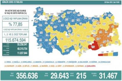 Covid-19, Türkiye'de 26 Ekim'de 215 toplamda 69.494 can aldı