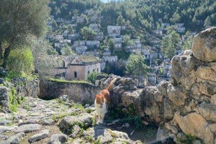 'Hayalet köy' hayran bırakıyor