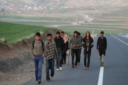 IMF'den Türkiye'ye göç uyarısı