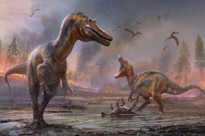 İngiltere'de yeni dinozor türleri bulundu