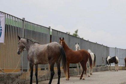 İstanbul Tarım ve Orman İl Müdürlüğü'nden İmamoğlu'na cevap