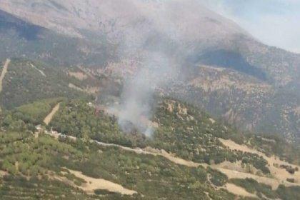 İzmir'in iki ilçesinde orman ve makilik alanda yangın