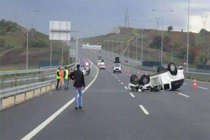 Kocaeli'de trafik kazası: Bagajdan avlanması yasak kızıl geyik çıktı
