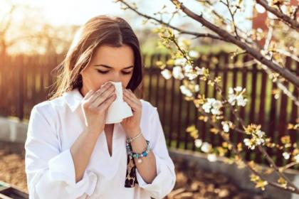 Koronavirüs ağaçlardaki polenler aracılığıyla en az 20 metre uzağa yayılıyor